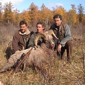 Trophies - Bighorn sheep