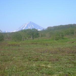 Kamchatka nature