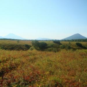 Kamchatka gems