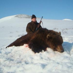 Trophies - Bear