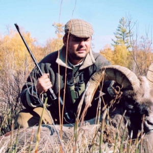 Trophies - Bighorn sheep
